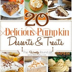 20 Delicious Pumpkin Desserts & Treats recipes that will make you drool this Fall