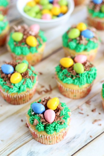 1-birds-egg-nest-cupcakes-7-682x1024