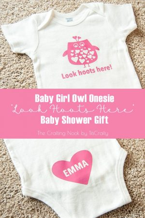 Baby Girl Owl Onesie Baby Shower Gift