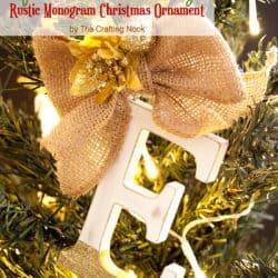 Cute and Easy DIY Family Rustic Monogram Christmas Ornaments