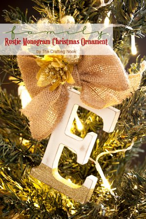 DIY Family Rustic Monogram Christmas Ornaments