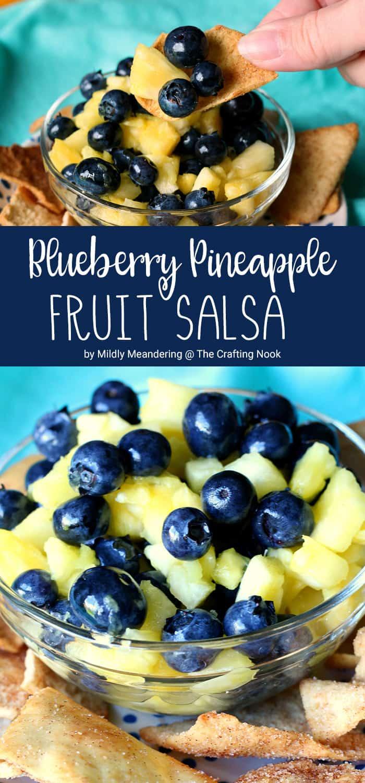 Blueberry Pineapple Fruit Salsa